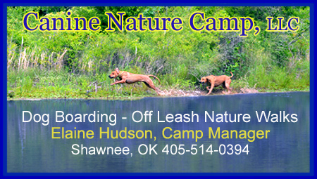 Canine Nature Camp Boarding Kennel